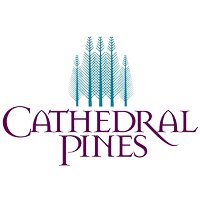 Newly Built Homes in Cathedral Pines Colorado Springs